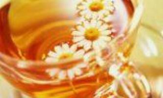 Лікарські рослини для органів дихання