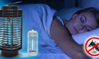 На яке світло летять комарі: світлодіодні лампи проти комарів