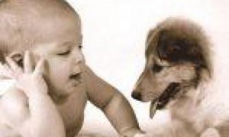 Профілактика і лікування глистів у дітей