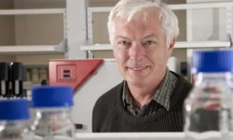 Створена нова комбінована вакцина для боротьби зі streptococcus a