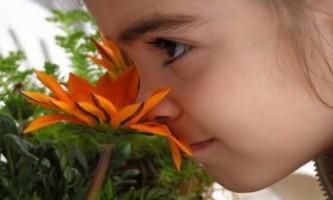 Вчені прелагают діагностувати аутизм через нюх